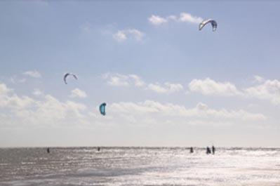 Nautsime sur l'île de Noirmoutier