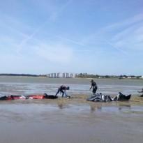 Merci stagiaire école kitesurf Noirmoutier / Fromentine / Vendée
